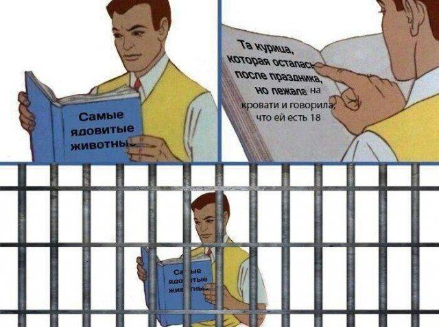 prikoly-citaty-vkontakte-vkontakte-smeshnye-statusy