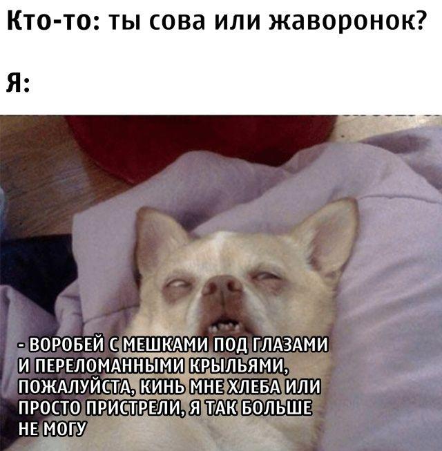 1597927997_podb_14.jpg
