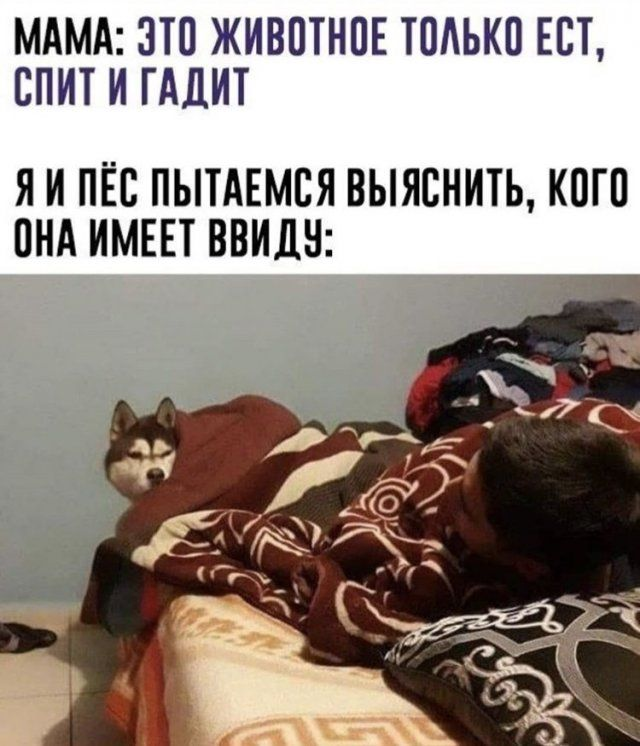209732_76983.jpg