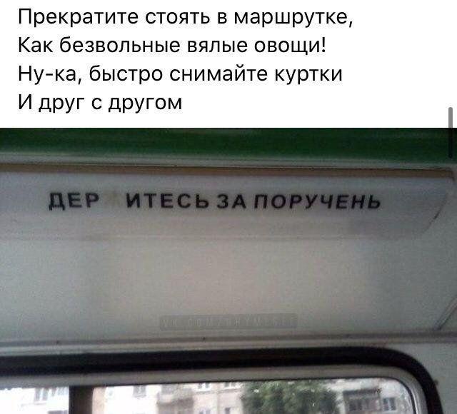 199699_14_trinixy_ru.jpg