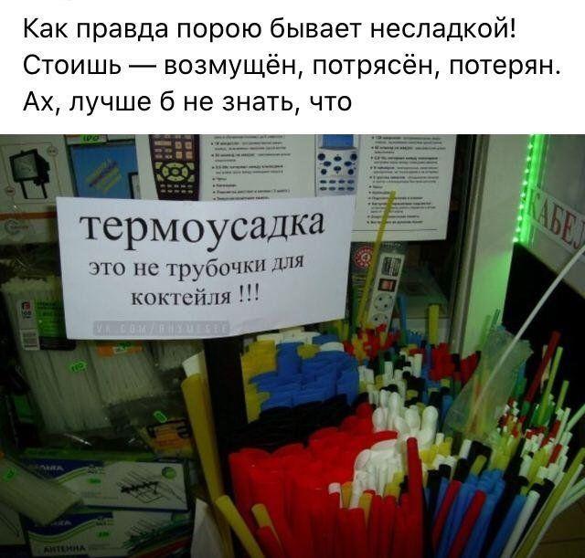 199699_7_trinixy_ru.jpg