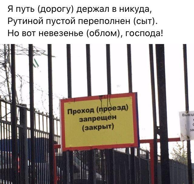 199699_8_trinixy_ru.jpg