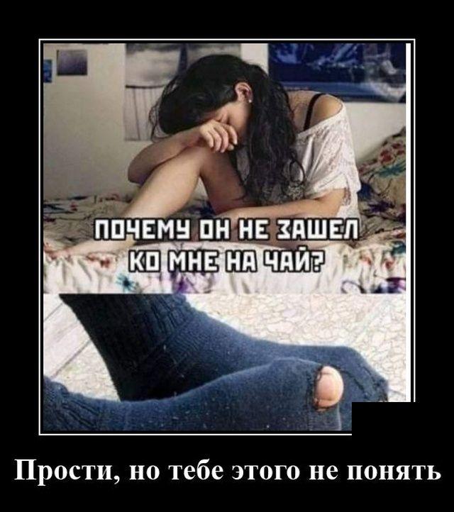 211061_59879.jpg
