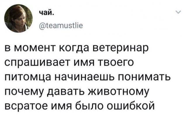 199863_14_trinixy_ru.jpg