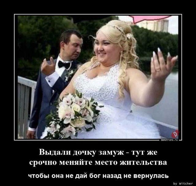 1598512196_demy-10.jpg