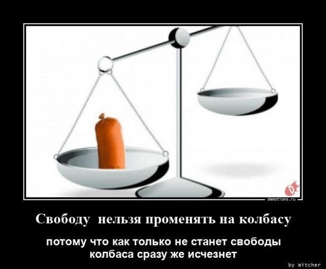 1598598560_demy-11.jpg