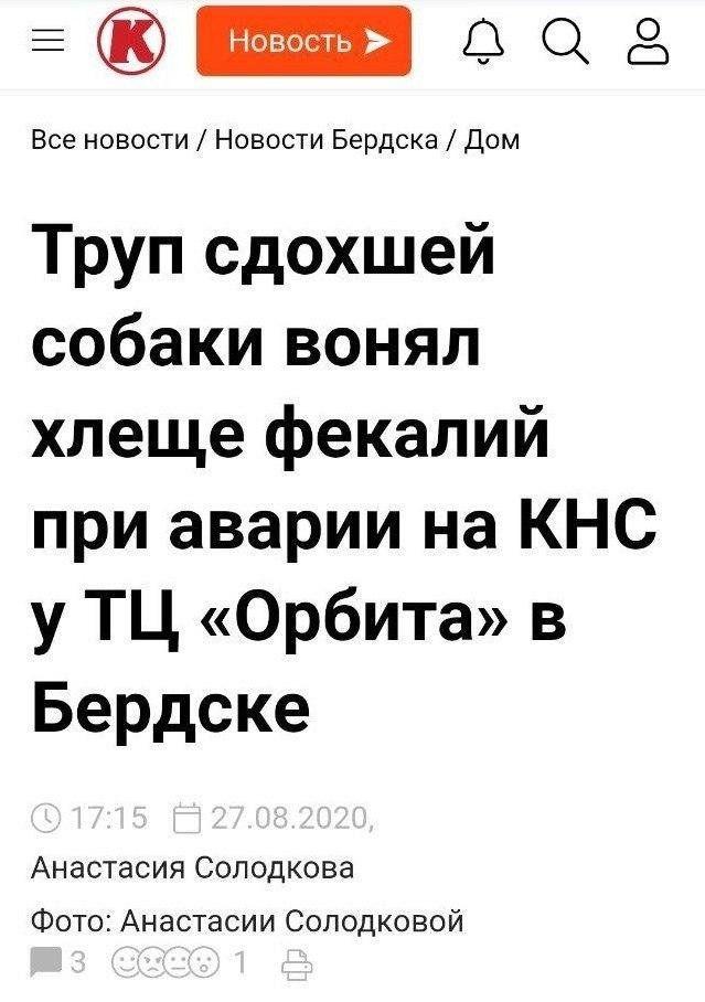199858_12_trinixy_ru.jpg