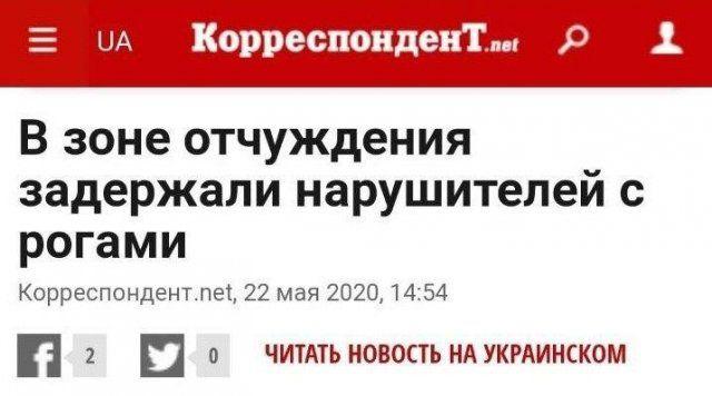 199858_9_trinixy_ru.jpg