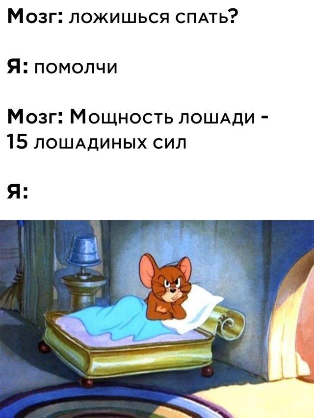 1599211884_podb_01.jpg