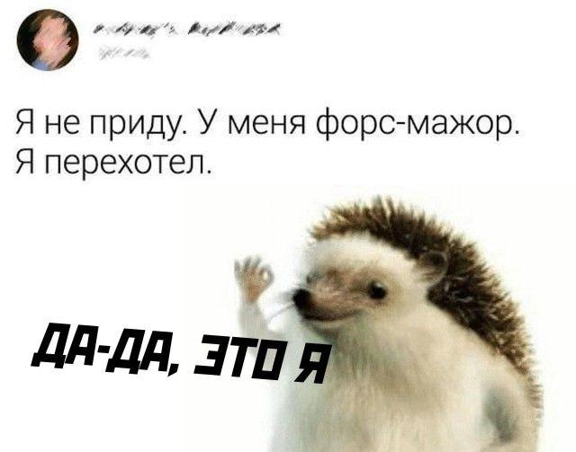 1599211883_podb_29.jpg