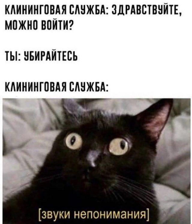 200466_14_trinixy_ru.jpg