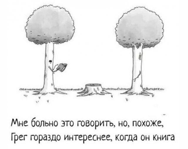 200466_8_trinixy_ru.jpg