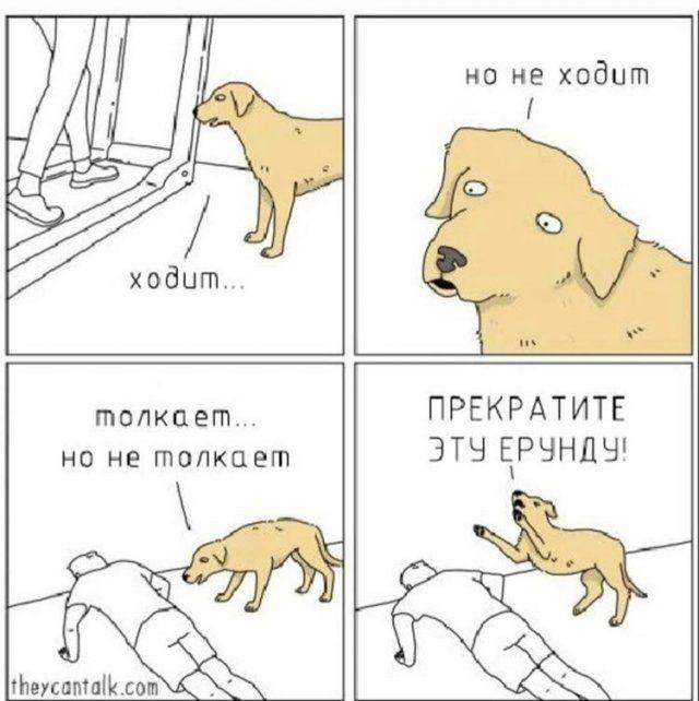 200466_15_trinixy_ru.jpg