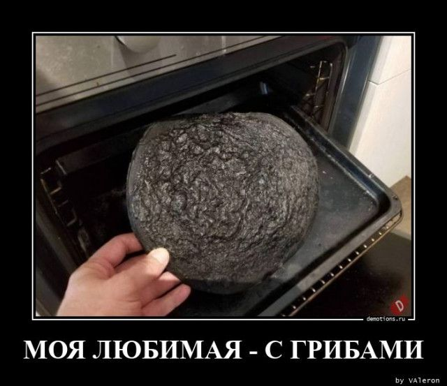 1599721027_demy-4.jpg