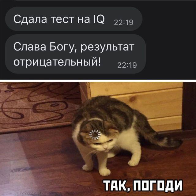1600331085_podb_02.jpg