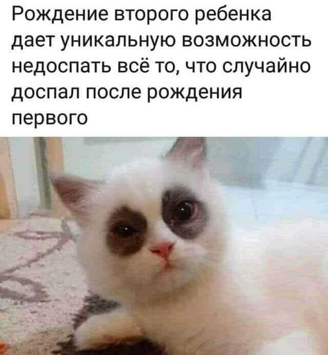 1600425357_prikol-7.jpg
