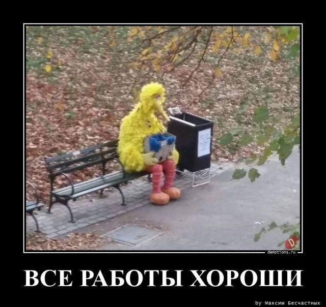 1600929966_demy-10.jpg