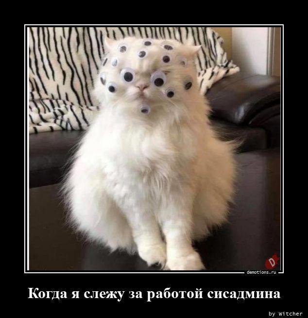 1600845011_demy-13.jpg