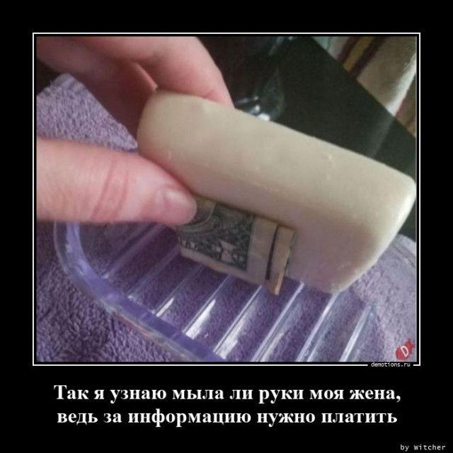 1600929960_demy-11.jpg