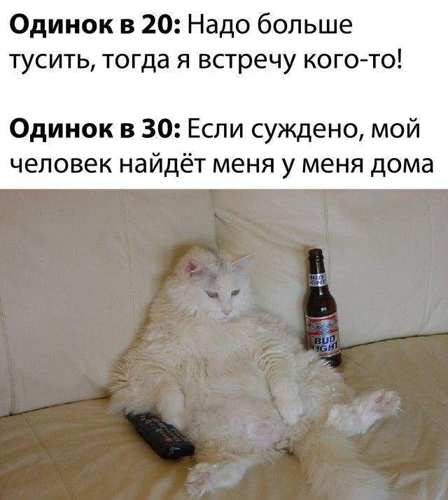 1601336144_prikol-7.jpg