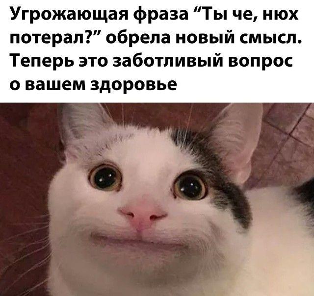 1601336150_prikol-19.jpg