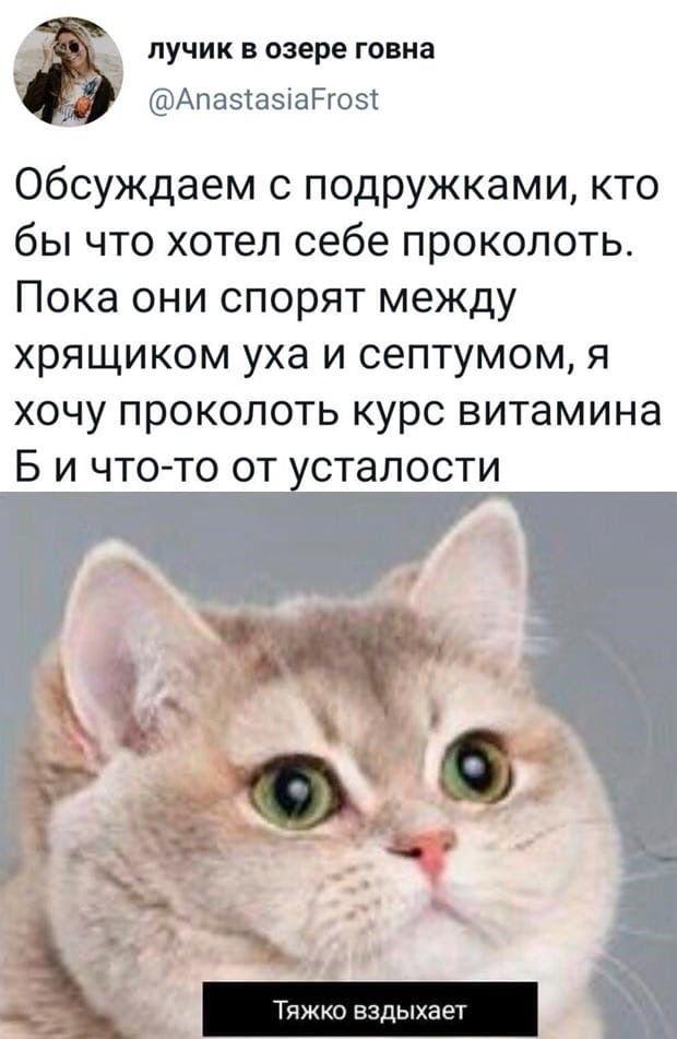 1601336065_prikol-1.jpg