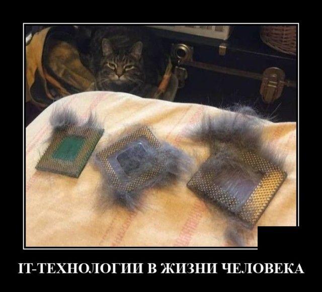 220340_13761.jpg