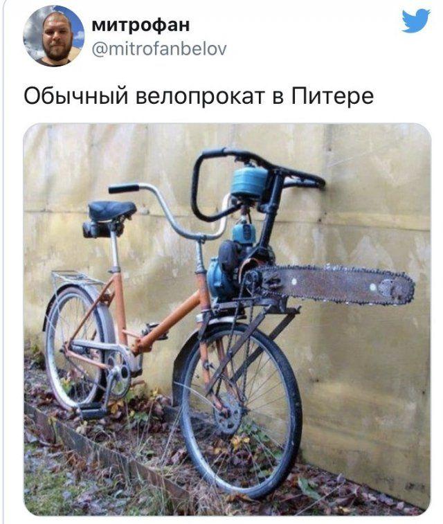 221881_20038.jpg