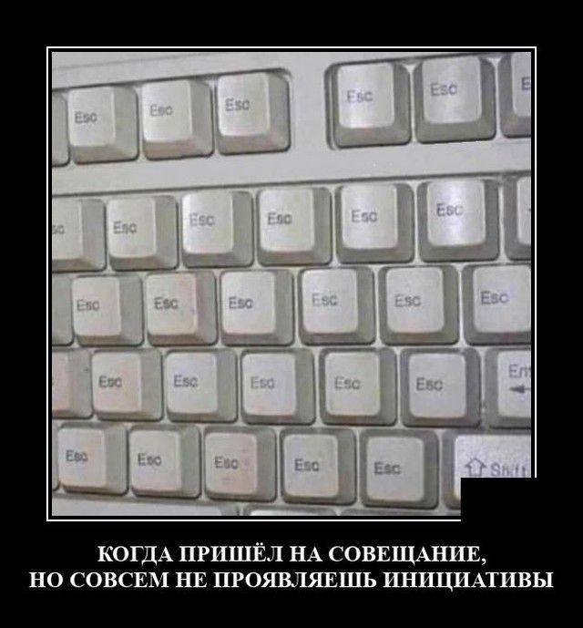 1602178290_0017.jpg