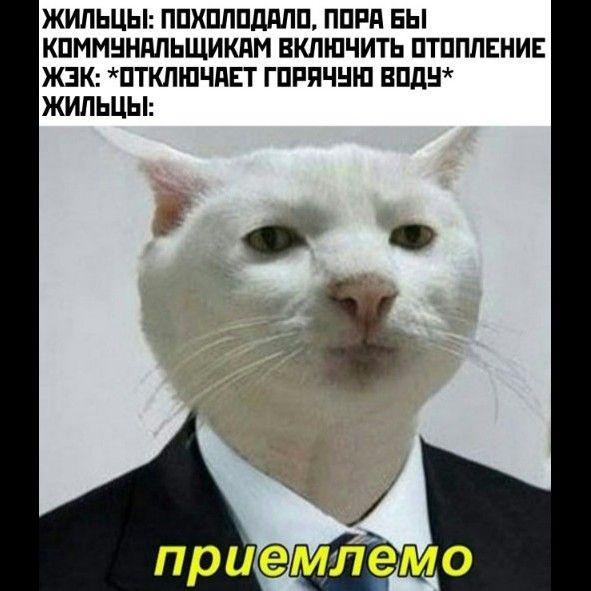 222937_26083.jpg