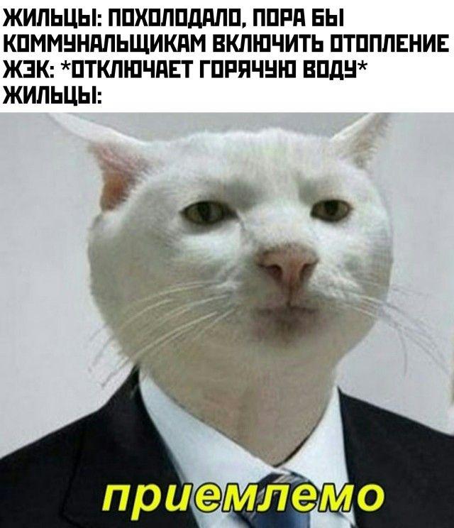 1602272403_prikol-23.jpg