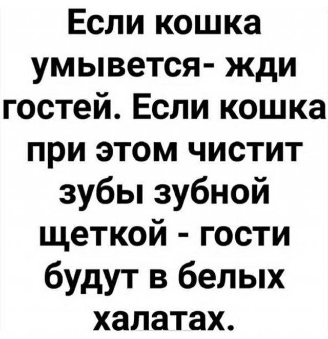 Лучшие комментарии, шутки и мемы из Сети │ фото Приколы,ekabu,ru,лучшее,мемы,смешное,фото