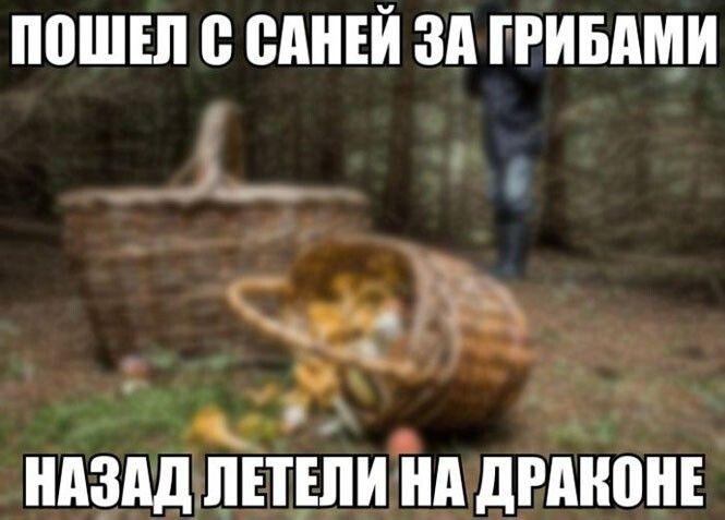 Новые картинки – смешинки Приколы,myprikol,com