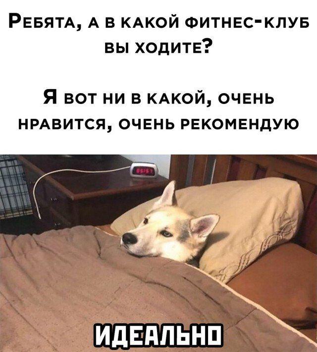 1603664014_lol-15.jpg