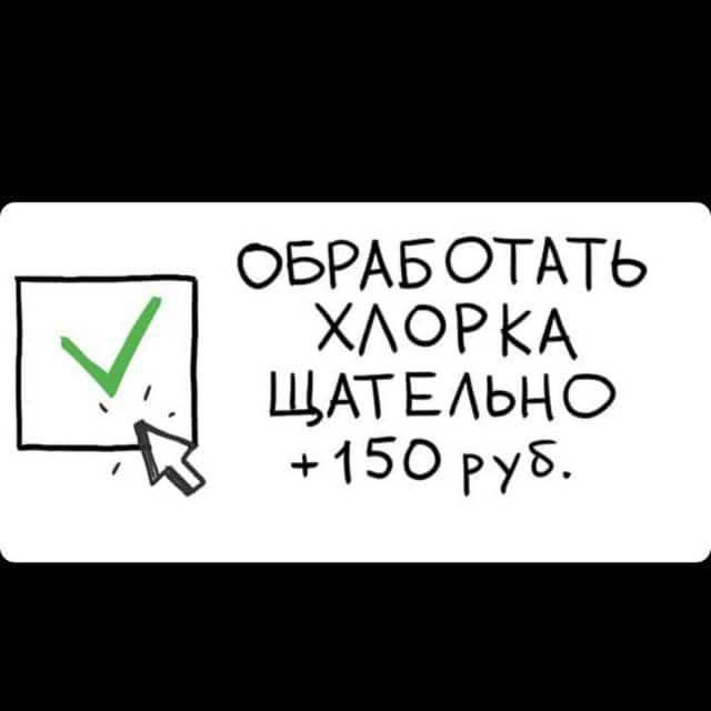 1603622465_0003.jpg