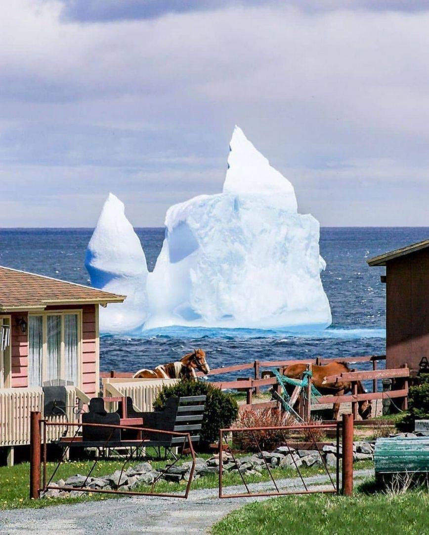 kanade-vremenem-kartinki-smeshnye-kartinki-fotoprikoly