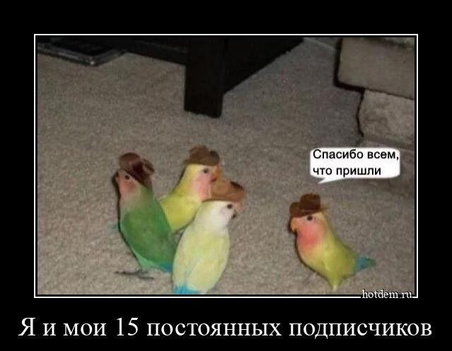 1604477190_demy-2.jpg