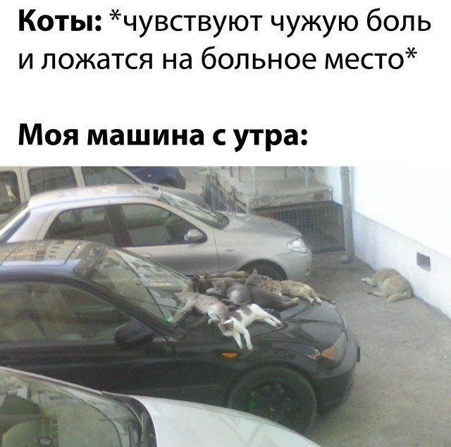 1604928140_2.jpg
