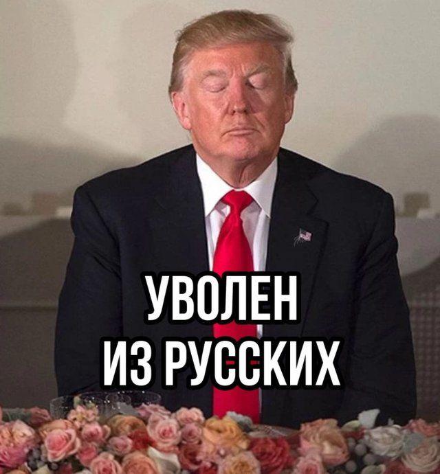 229169_44499.jpg