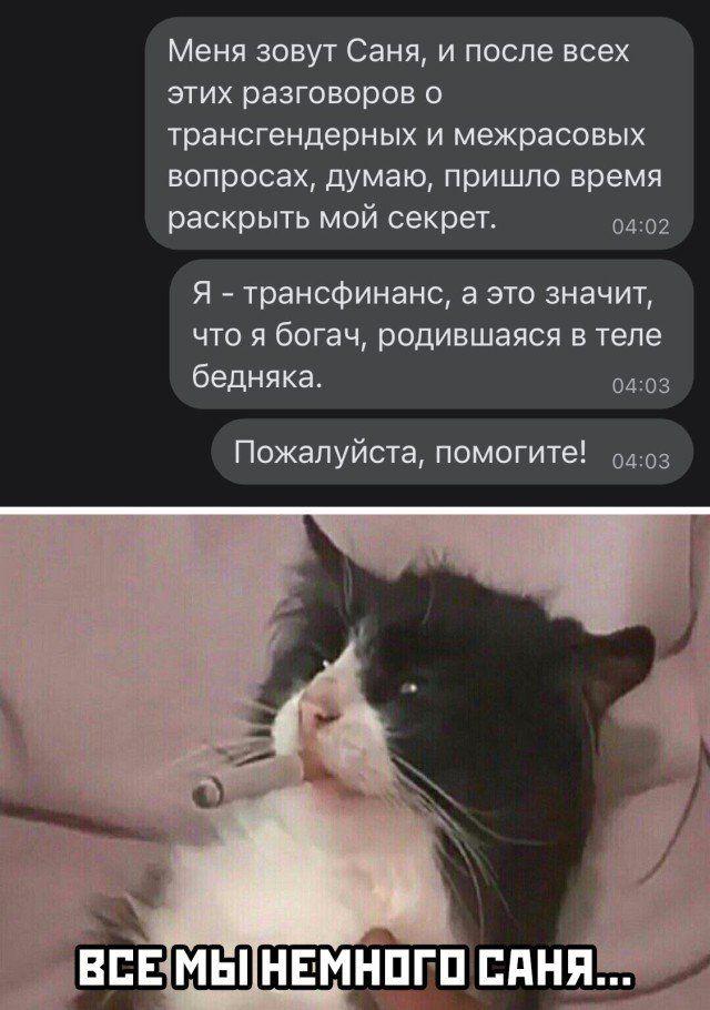 203560_5_trinixy_ru.jpg