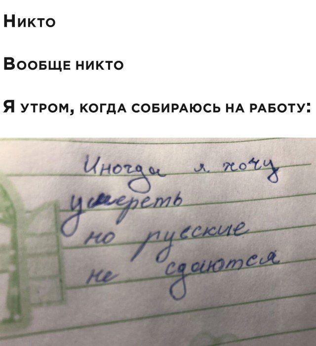203560_17_trinixy_ru.jpg