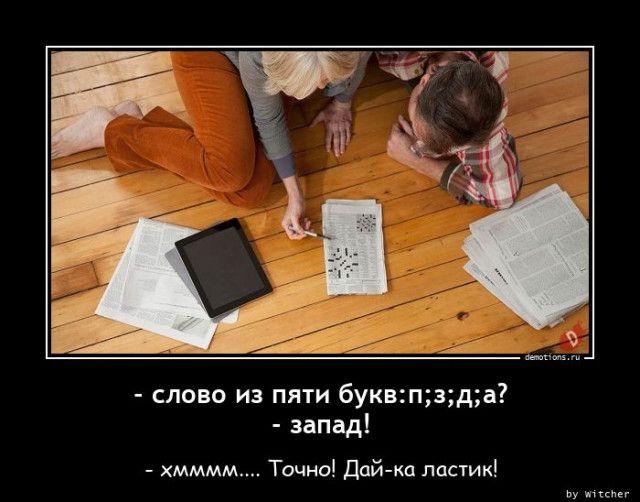 1604995914_demy-11.jpg