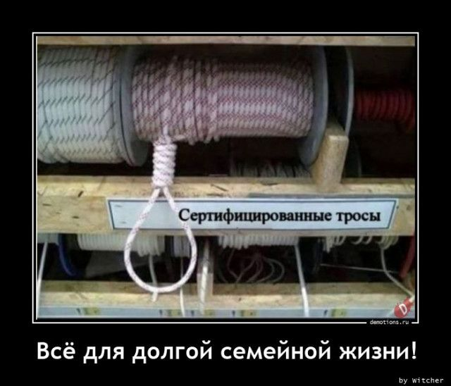 1605082175_demy-10.jpg