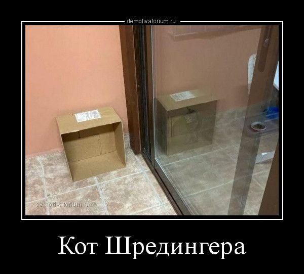 1605082163_demy-13.jpg