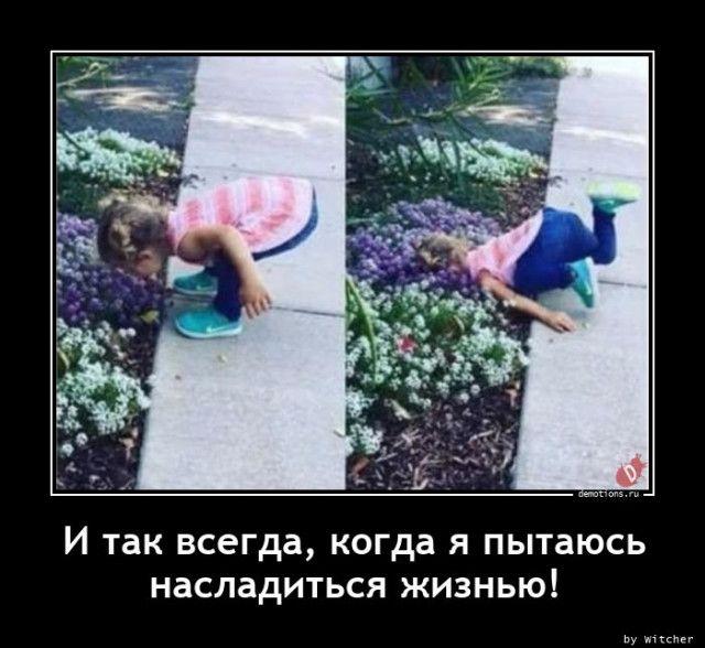 1605082177_demy-11.jpg