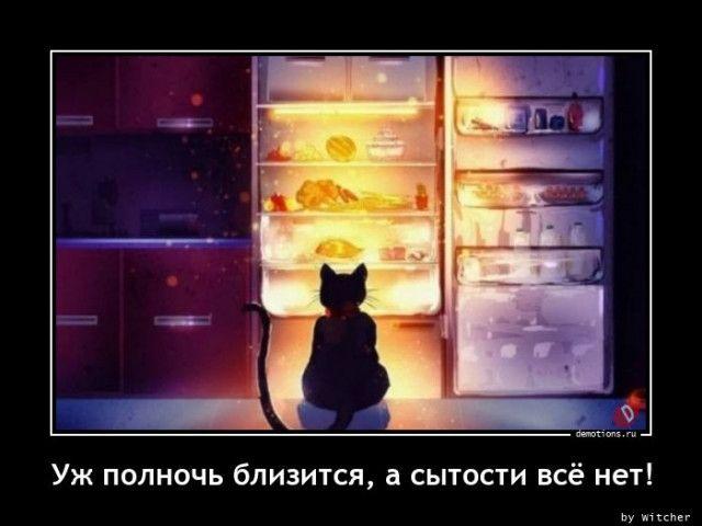 1605082215_demy-8.jpg
