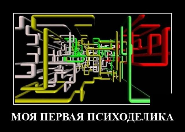 229589_14625.jpg
