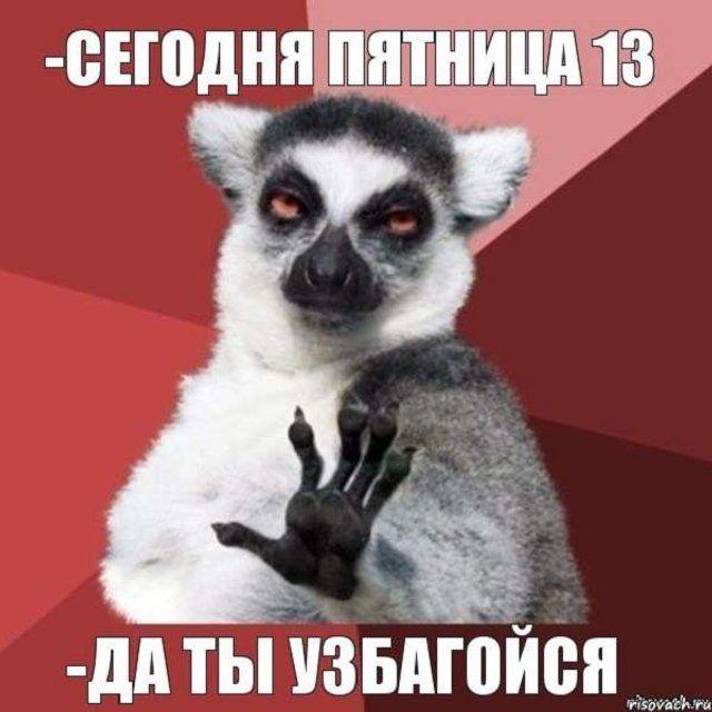 1605274643_17.jpg