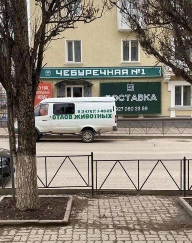 203759_13_trinixy_ru.jpg