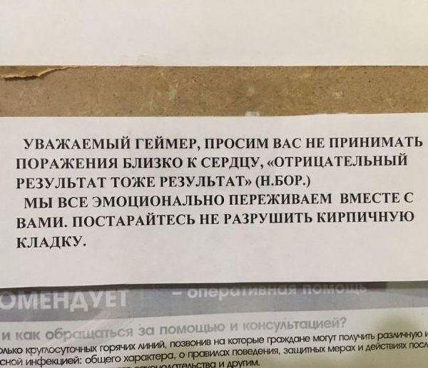 203823_19_trinixy_ru.jpg